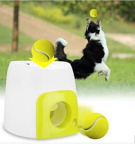 """משחק לכלב """"זורק"""" כדורי טניס ב₪136 בלבד! משלוח חינם!"""