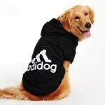 Adidog – כי גם לכלב שלכם כבר קצת קריר :-)