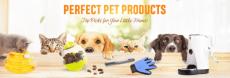 גם להם מגיע: מבצעי Gearbest – עם עשרות מוצרים מיוחדים לבעלי-חיים – החל מ-1.72 $ !